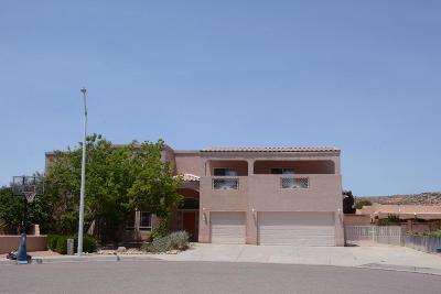 Albuquerque NM Single Family Home For Sale: $329,000