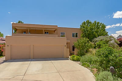Albuquerque Single Family Home For Sale: 2205 Via Seville Road NW