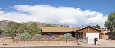 Albuquerque Single Family Home For Sale: 514 Monte Alto Drive NE