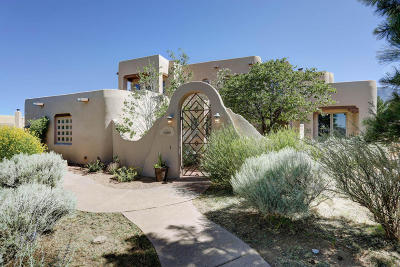 Albuquerque Single Family Home For Sale: 6100 Buffalo Grass Court NE