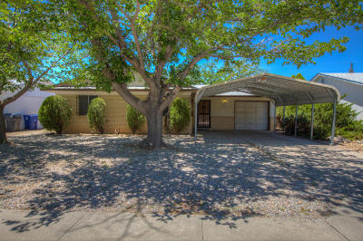 Albuquerque Single Family Home For Sale: 1819 Luthy Drive NE