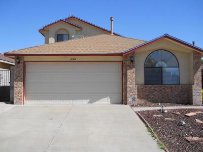 Albuquerque Single Family Home For Sale: 6509 Lamar Avenue NW