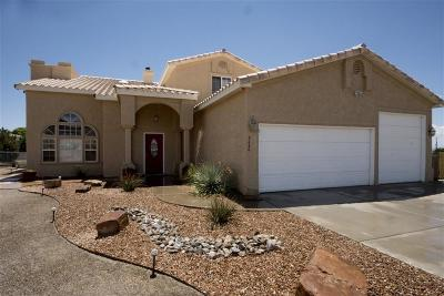 Albuquerque NM Single Family Home For Sale: $595,000