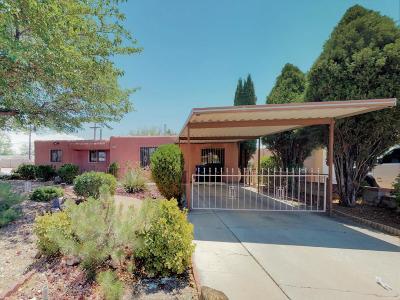 Albuquerque Single Family Home For Sale: 9722 Salem Avenue NE