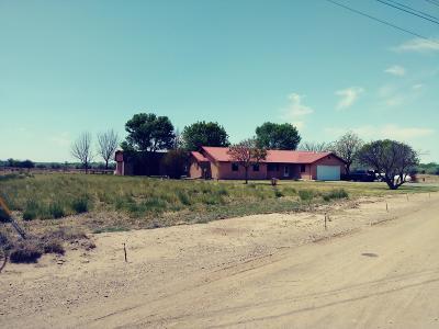 Valencia County Single Family Home For Sale: 14 Nighthawk Lane