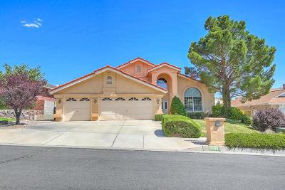 Bernalillo County Single Family Home For Sale: 9300 Thornton Avenue NE