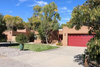 Albuquerque Single Family Home For Sale: 10047 Los Cansados Road NW