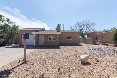 Albuquerque Single Family Home For Sale: 1213 Luthy Circle NE