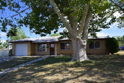 Albuquerque Single Family Home For Sale: 8509 Claremont Avenue NE