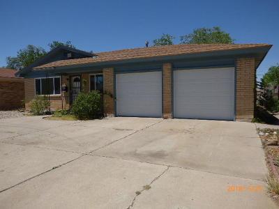 Albuquerque Single Family Home For Sale: 721 San Pedro Drive SE