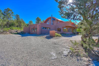 Tijeras, Cedar Crest, Sandia Park, Edgewood, Moriarty, Stanley Single Family Home For Sale: 449 Juan Tomas Road