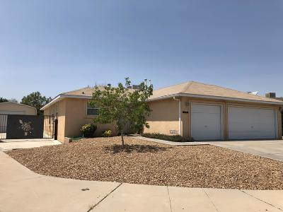 Albuquerque Single Family Home For Sale: 1401 Desert Bloom Court NW