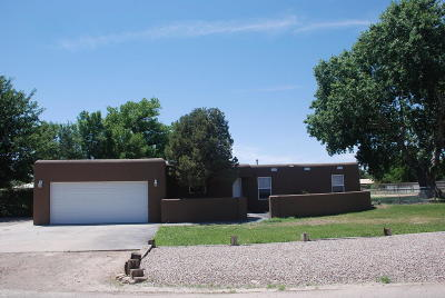 Valencia County Single Family Home For Sale: 1015 McNew Lane