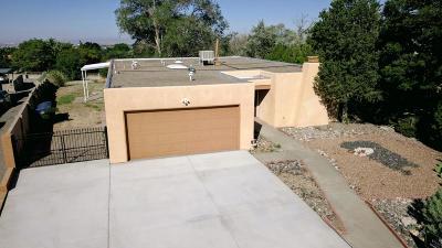 Albuquerque Single Family Home For Sale: 1205 Sasebo Street NE