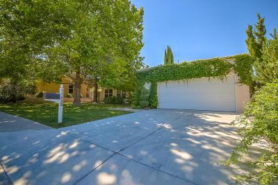 Albuquerque Single Family Home For Sale: 11428 Woodmar Lane NE