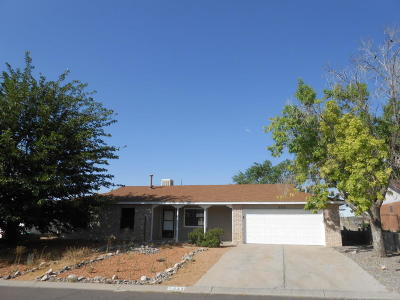 Rio Rancho Single Family Home For Sale: 533 Stallion Road SE