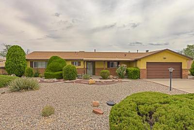 Rio Rancho Single Family Home For Sale: 4609 Los Reyes Road SE
