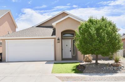 Albuquerque Single Family Home Active Under Contract - Short : 10516 Calle Merida NW
