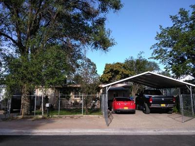 Albuquerque Single Family Home For Sale: 3202 Viola Drive SW