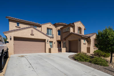 Rio Rancho Single Family Home For Sale: 116 Los Miradores Drive NE