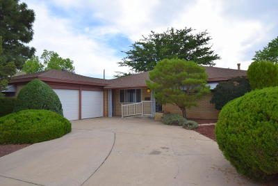 Albuquerque Single Family Home For Sale: 1502 Georgia Street NE