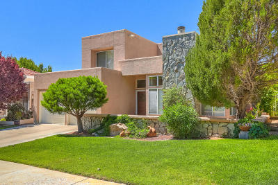 Albuquerque Single Family Home For Sale: 10017 Barrinson NE