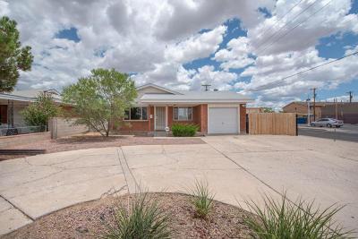 Albuquerque Single Family Home For Sale: 1044 San Pedro Drive SE