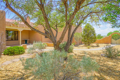 Placitas Single Family Home For Sale: 6 Norte Trail Court