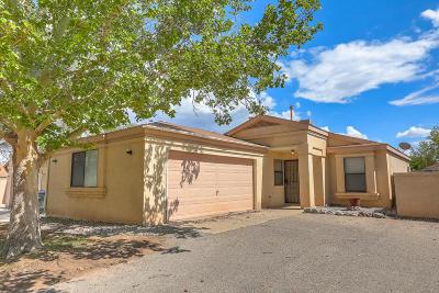 Rio Rancho Single Family Home For Sale: 1828 Peach Road NE