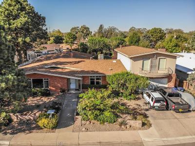 Albuquerque Single Family Home For Sale: 713 Montclaire Drive NE