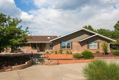 Albuquerque Single Family Home For Sale: 1601 La Cabra Drive SE