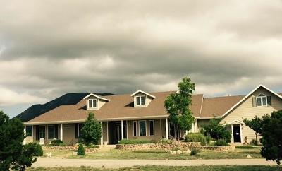 Tijeras, Cedar Crest, Sandia Park, Edgewood, Moriarty, Stanley Single Family Home For Sale: 61 Moonbeam Ranch Road # B