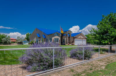 Los Lunas Single Family Home For Sale: 32 Blackberry Lane