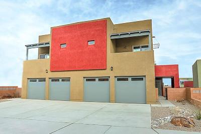 Albuquerque Attached For Sale: 1624 Volponi Drive SE