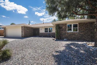 Albuquerque Single Family Home For Sale: 12020 Donna Court NE