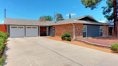 Albuquerque NM Single Family Home For Sale: $245,000
