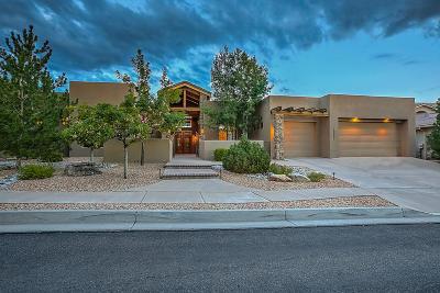 Albuquerque Single Family Home For Sale: 12908 Juniper Canyon Trail NE