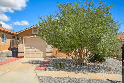 Albuquerque Single Family Home For Sale: 6115 Canis Avenue NW