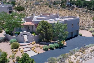 Albuquerque Single Family Home For Sale: 4900 Cresta Del Sur Court NE