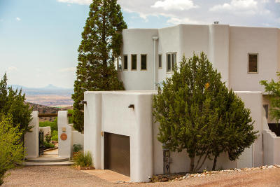 Placitas Single Family Home For Sale: 9 Sombra Del Monte Road