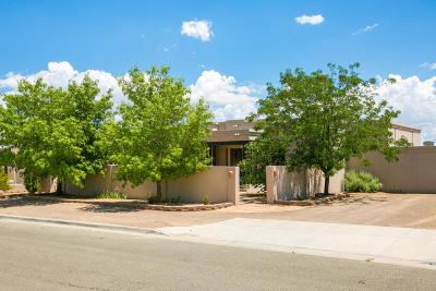 Rio Rancho Single Family Home For Sale: 2136 Gazelle Road NE