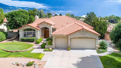 Albuquerque Single Family Home For Sale: 12330 Magic Mist Road