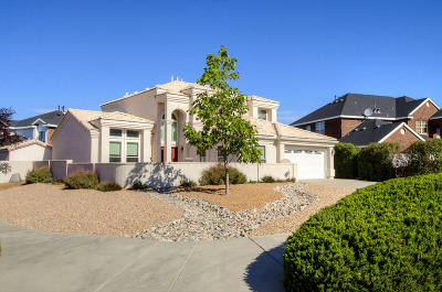 Albuquerque Single Family Home For Sale: 9123 Macallan Road NE