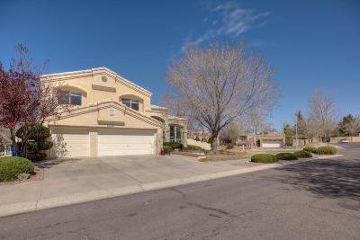 Albuquerque Single Family Home For Sale: 5533 Via Conejo NE