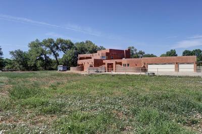Albuquerque Single Family Home For Sale: 1434 Tierra Verde Place SW