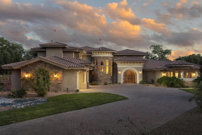 Los Ranchos Single Family Home For Sale: 1035 Cottonwood Drive NW