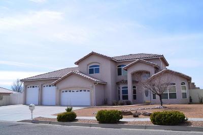 Rio Rancho Single Family Home For Sale: 3825 Bay Hill Loop SE