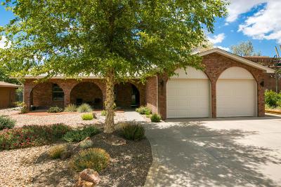 Albuquerque NM Single Family Home For Sale: $245,000