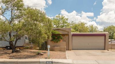 Albuquerque Single Family Home For Sale: 10216 Arvada Avenue NE