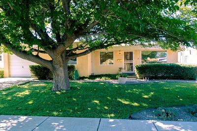 Albuquerque Single Family Home For Sale: 9524 Elvin Avenue NE